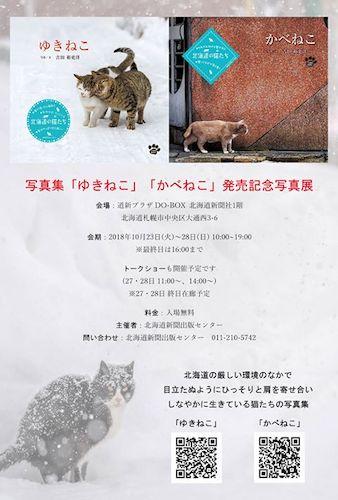 吉田裕吏洋氏が北海道のネコに密着した2冊の写真集「ゆきねこ&かべねこ」の写真展が開催