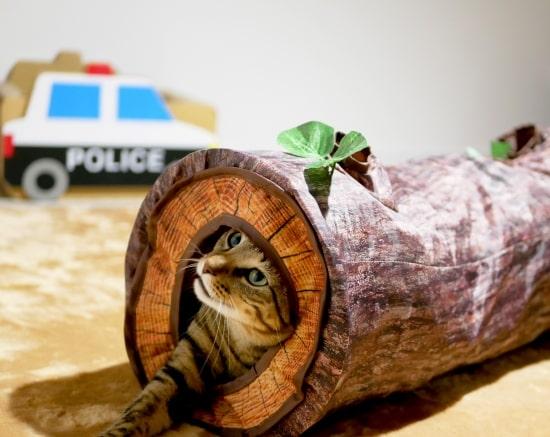 猫ちゃんのための猫用WOOD調トンネル by nekoha shop