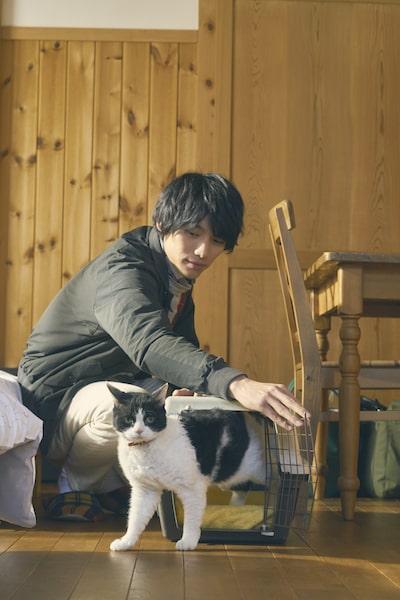 福士蒼汰と猫のナナ 未公開ショット