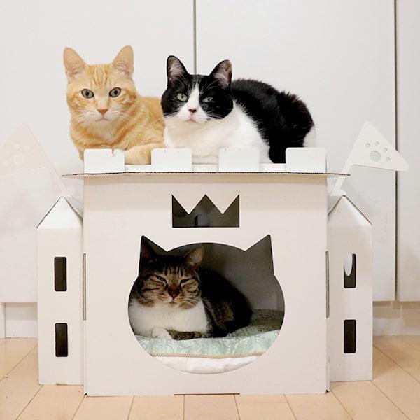 猫用品&雑貨店「kitten's ribbon」の猫の城