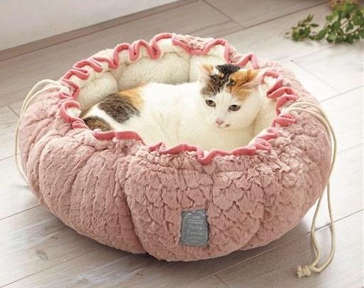 ポーチ型ペットクッションに座る猫のイメージ