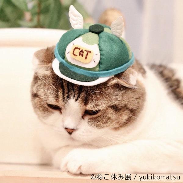 猫のぼうし by yukikomatsu
