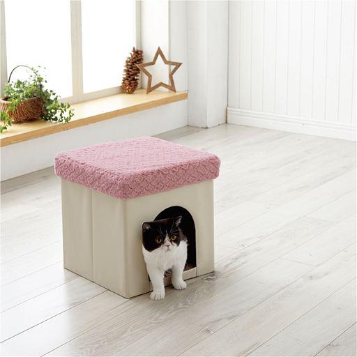 スツール型ペットハウス by セシール