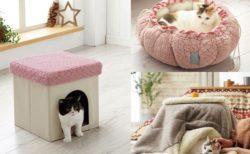 猫のこたつクッションも!セシールから新登場した猫用の暖房グッズ4選