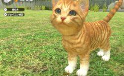 リアルな子猫&子犬育成ゲーム「LITTLE FRIENDS –DOGS & CATS-」Nintendo Switchで12月に発売