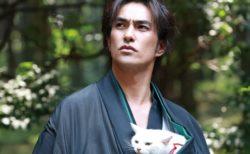 今年は猫映画を11本上映!42店舗が参加する「吉祥寺ねこ祭り」が開催中