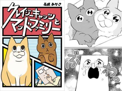 クレイジーでマッドな日常エッセイ猫漫画「クレイジーキャッツとマッドファミリー」