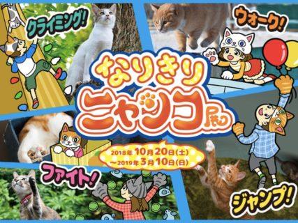 猫になりきってミッションに挑戦!「なりきりニャンコ展」がオービィ横浜で開催
