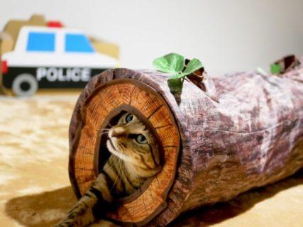 インテリア性が抜群、猫ちゃんのための猫用wood調トンネル