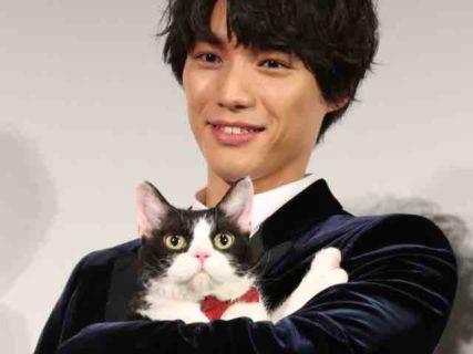 映画・旅猫リポートの公開前日、福士蒼汰と猫のナナが舞台挨拶した様子を公開