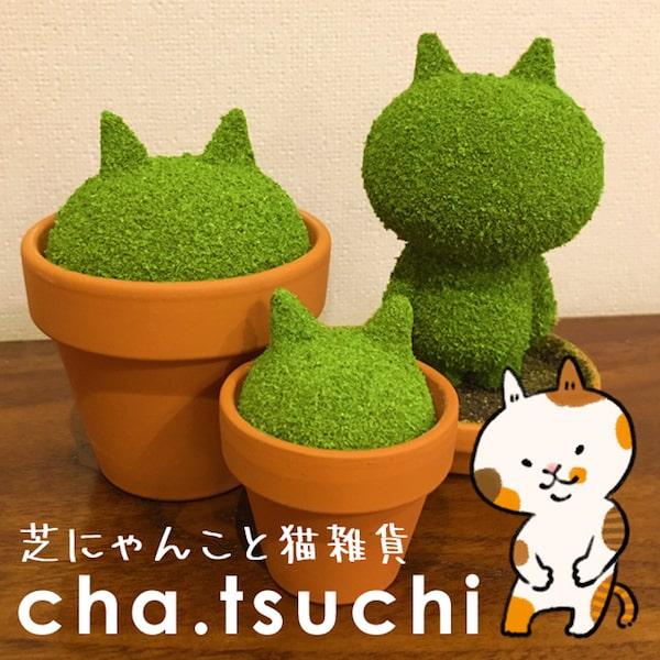 芝にゃんこ by cha.tsuchi