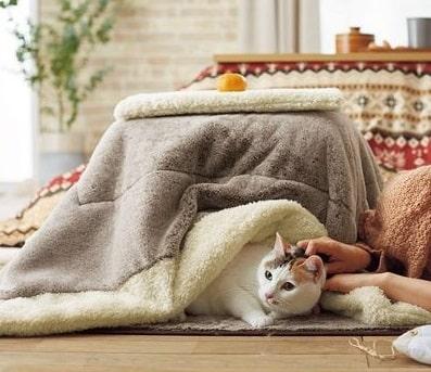 猫が入れるコタツ型のクッション「ねこたつクッション」 by セシール