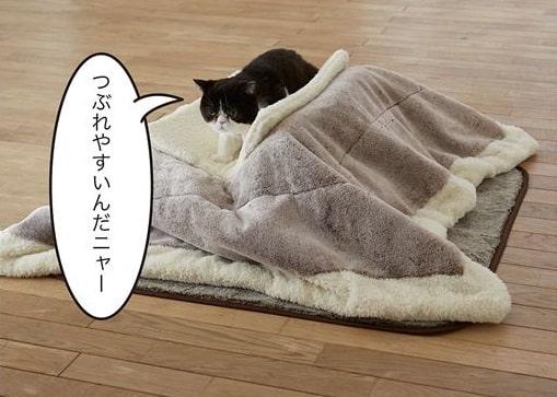 「ねこたつクッション」を上から乗って潰す猫