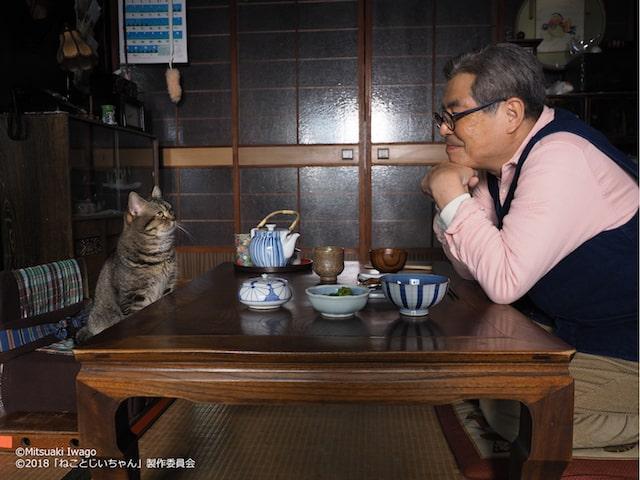 映画「ねことじいちゃん」のワンシーン(猫と立川志の輔)