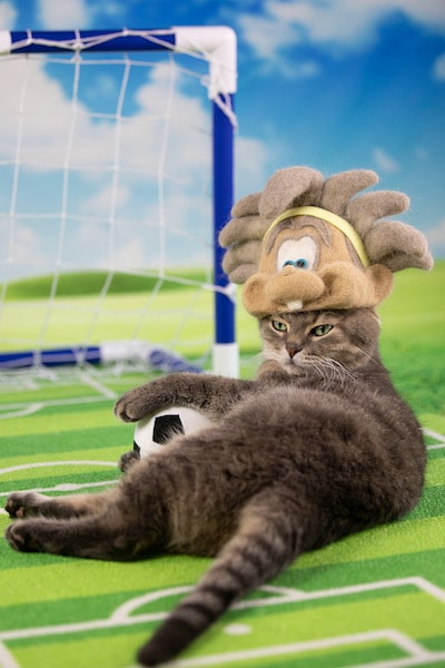 rojimanが制作した猫の抜け毛で作ったガンバボーイの帽子