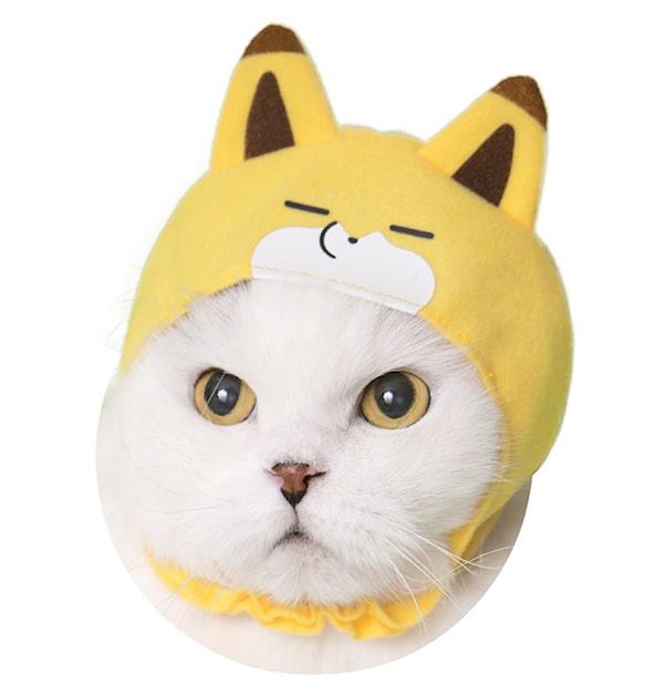 寝るキツネ by かわいい猫のかぶりもの