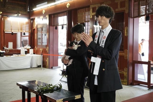 神田明神で祈祷を受ける福士蒼汰と猫のナナ(映画旅猫リポートのヒット祈願)