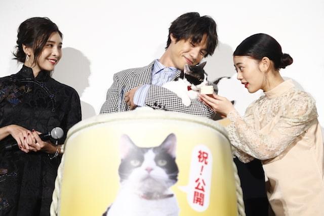 映画「旅猫リポート」公開初日舞台挨拶で猫用ミルクを飲む主演猫のナナ
