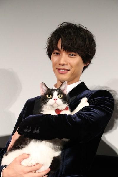 福士蒼汰に抱かれてカメラ目線を送る猫のナナ