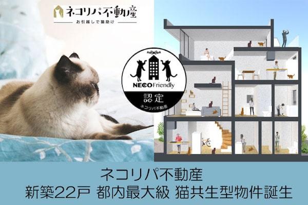 猫と共生型の新築マンション「feel CnB(フィール シーアンビー)」