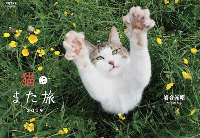アサヒカメラ2018年12月号に付属する岩合光昭さんの猫カレンダー「猫にまた旅」