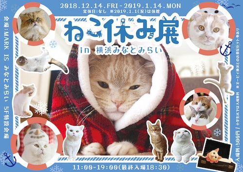 ねこ休み展 in 横浜みなとみらい(猫の写真展&物販展)のパンフレット