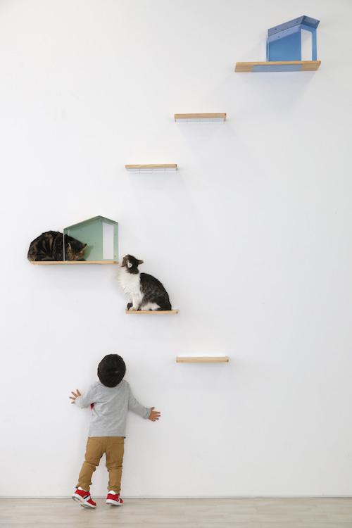 キャットシェルフ・NeconoMa(ネコノマ)シリーズの第2弾製品を壁に設置したイメージ