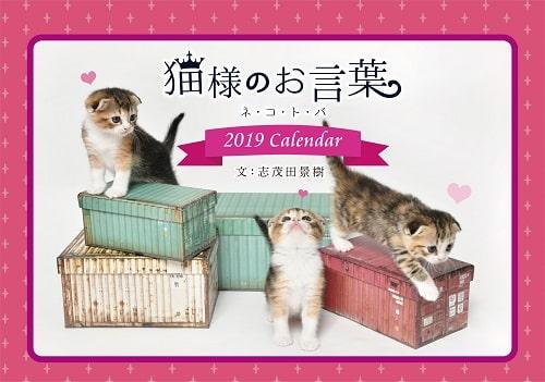 猫様のお言葉 ネ・コ・ト・バ2019の表紙