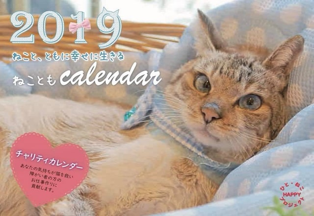 福岡ねこともの会による2019年度の猫のカレンダー(表紙)