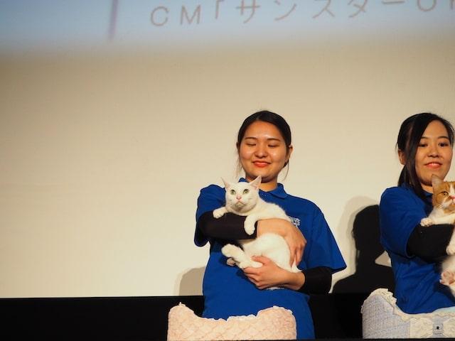映画『猫侍』で大活躍した猫のあなご