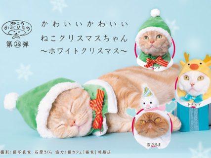 今年の冬は愛猫とホワイトクリスマス♪ かわいいねこのかぶりもの最新作が登場