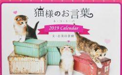 志茂田景樹氏の名言と子猫に癒やされる♪ 異色の猫カレンダー2019年版が発売