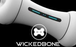 ペットと遊んでくれる!骨の形をした未来型のペット用玩具「ウィキッドボーン」