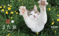 毎年恒例!アサヒカメラ12月号に岩合さんの猫カレンダー&野生動物を収録