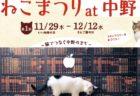 中野駅周辺の猫カフェや雑貨店などが参加「ねこまつり at 中野」12/12まで開催