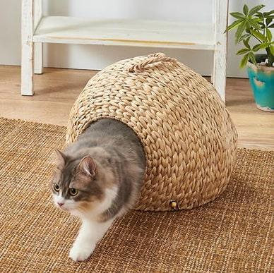 猫ハウス「ねこの巣」の使用イメージ