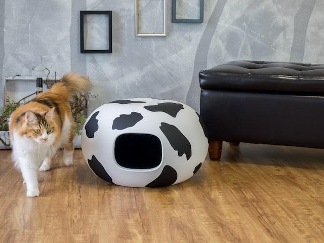 牛柄のキャットハウス「猫かまくら」を横切るネコ