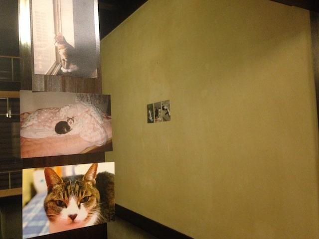 ホテルぬこ・ぬこでボーダレス展の展示作品イメージ