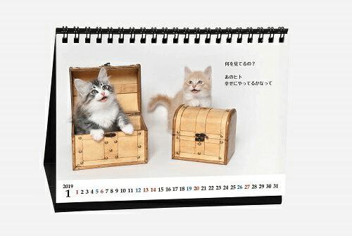 カレンダー「猫様のお言葉 ネ・コ・ト・バ2019」の商品イメージ