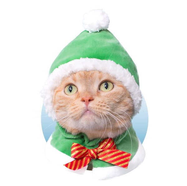サンタ by かわいい猫のかぶりもの