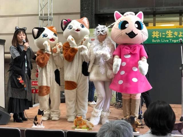 福岡ねこともの会による、動物愛護啓発活動の様子