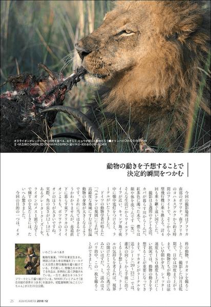 アサヒカメラ2018年12月号に収録されている岩合さんが撮影した迫力のネイチャー写真