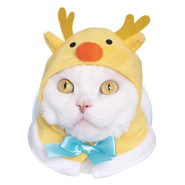 トナカイ by かわいい猫のかぶりもの