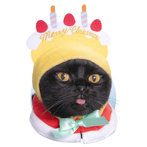 クリスマスケーキ by かわいい猫のかぶりもの