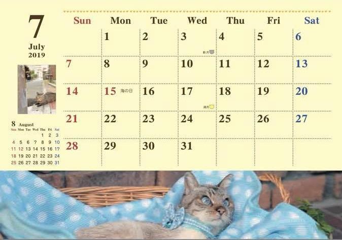 2019年7月の保護猫カレンダー(拡大イメージ) by 福岡ねこともの会