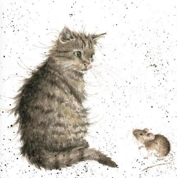 イギリスの動物画家ハンナ・デール(Hannah Dale)が描く猫のイラスト