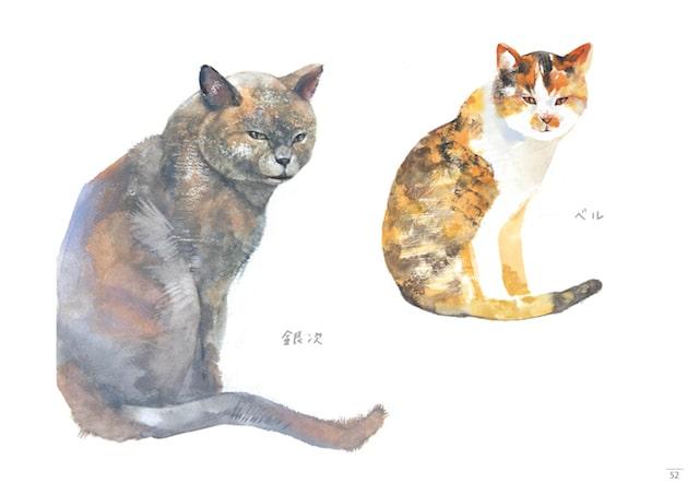 猫のスケッチ by はしもとみお