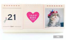 Instagramで注目のNyanConから、 おしゃれな日めくり猫カレンダー「ニャンカレ2019-花と猫-」が登場
