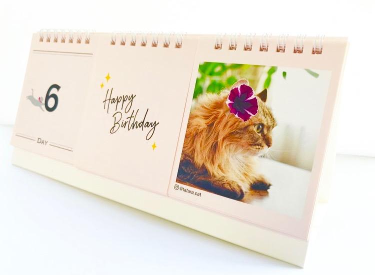 おしゃれな日めくり猫カレンダー「ニャンカレ2019-花と猫-」を斜め前方から見たイメージ