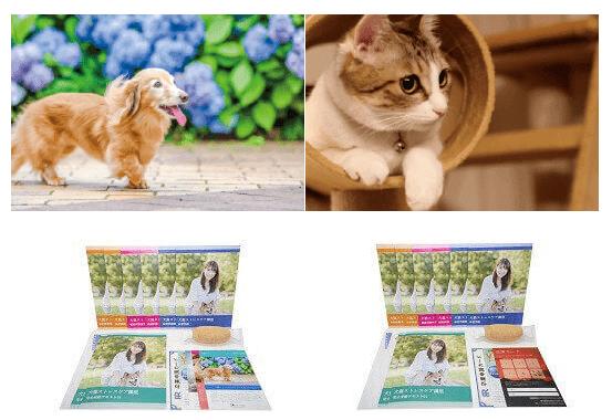 諒設計アーキテクトラーニングスクールの「犬猫ストレスケアアドバイザーW資格取得講座」通信講座